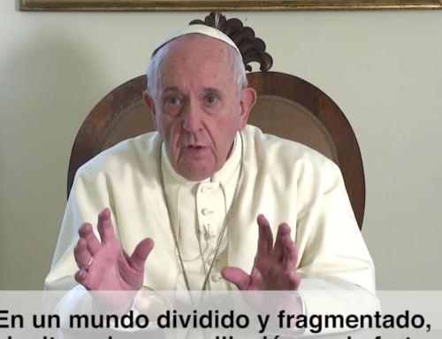Promoción de la paz en el mundo | El Video del Papa Enero 2020